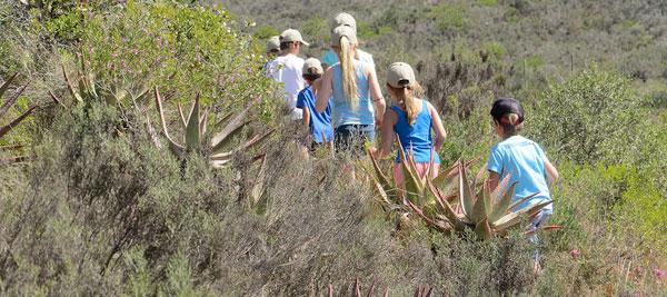 Kids on Safari