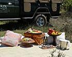 picnic_icon
